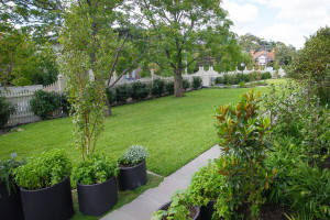 Derby-Landscape-Design-s1